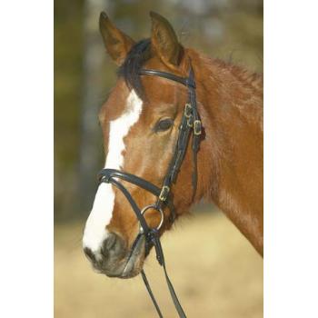 Ogłowie Horsepol Elegant