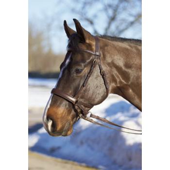 Ogłowie Horsepol bezwędzidłowe