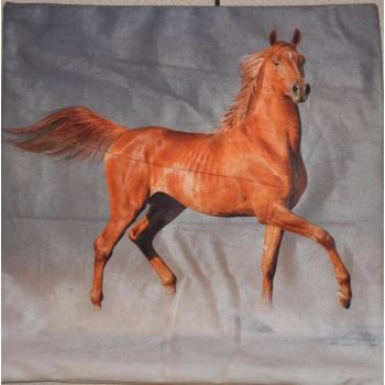 Poduszka koń 39x39 OZDOBNA POSZWA, FOTO POSZEWKA